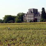 Abbaye des Citeaux