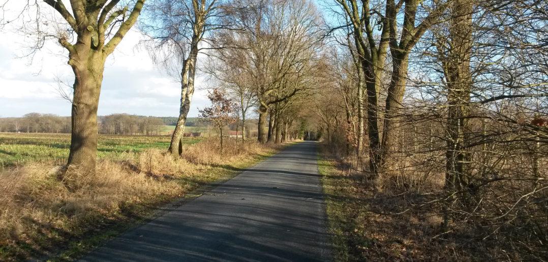 Geestweg bei Gräfinghausen