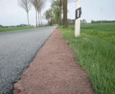 Bankett fehlt an Radwegen – also wächst Gras