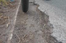 Gras abgeschoben: K 116