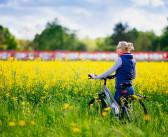 Radtouren des ADFC Stadt Diepholz